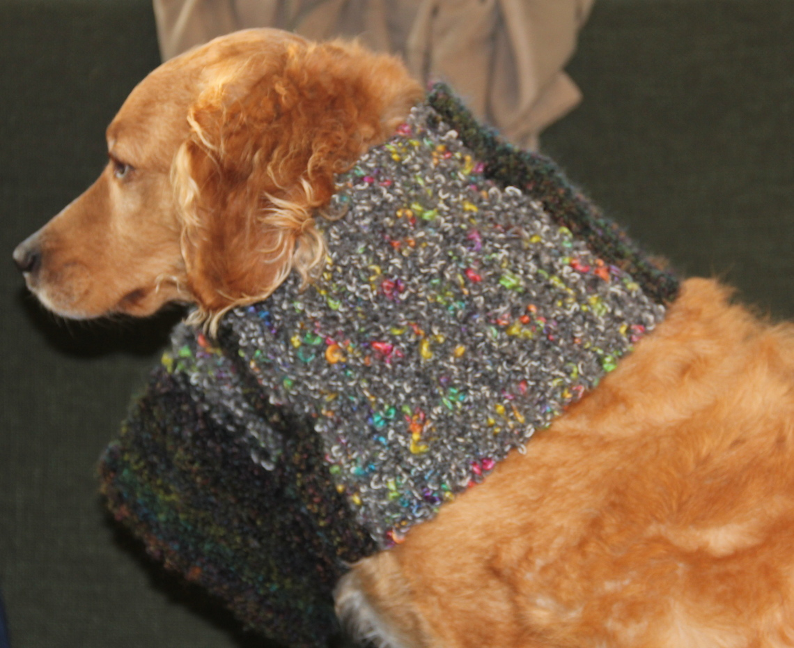 How to Knit a Neck Warmer or Scarf for a dog - Needles and Know How